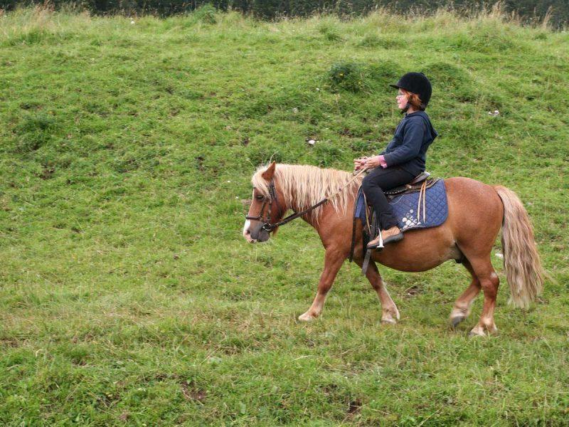 ecole cheval jura