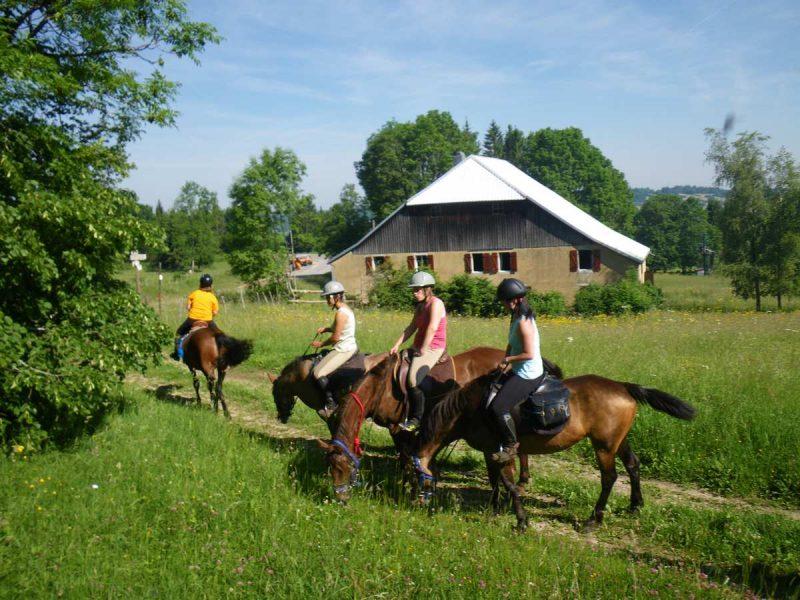 ecole d'equitation jura