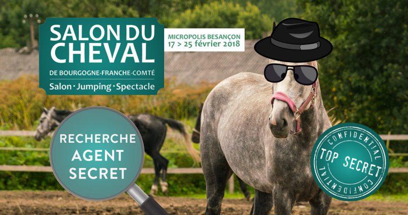 Salon du cheval besan on cheval passion jura - Salon du cheval tarif ...